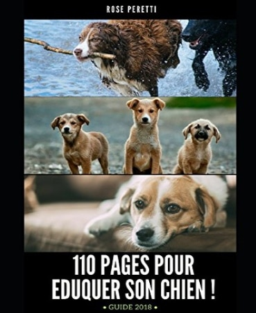 Livre pour éduquer son chien 110 PAGES top 5