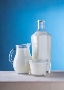Toxicité lait chez chien et chat