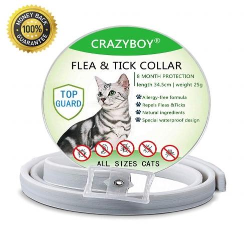 Collier antipuce pour chat CRAZYBOY huile essentielle TOP4