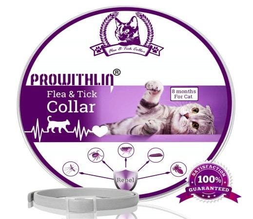 Collier antipuce pour chat PROWITHLIN économique TOP4