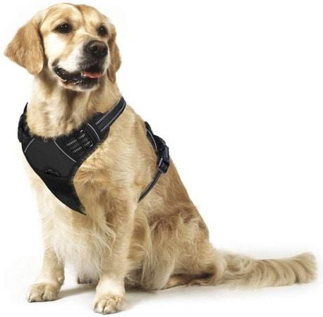 Meilleur harnais anti-traction RABBITGOO pour chien TOP3
