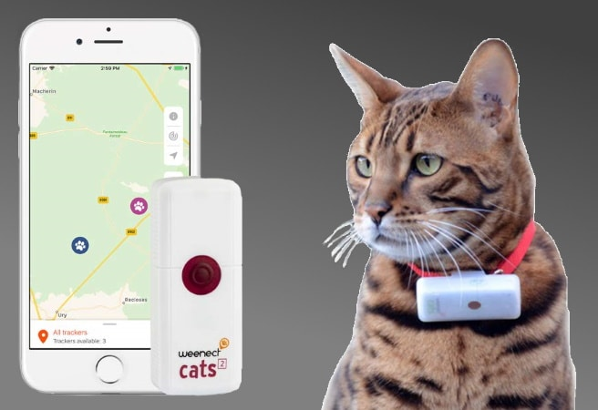 Traceur GPS pour chat WEENECT top 4