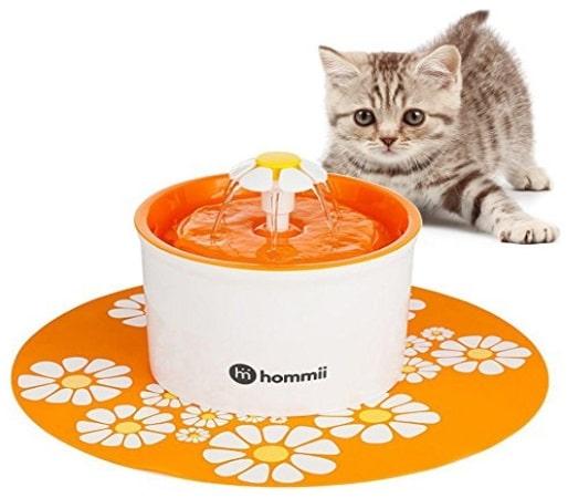 Fontaine à eau pour chat HOMMII Top 3