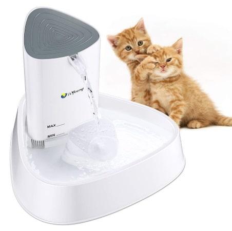 Fontaine à eau pour chat ISYOUNG Top 3