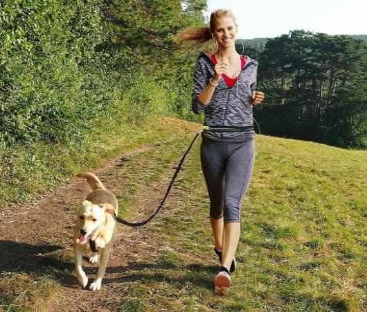 Laisse pour chien course à pied avec son animal, comme canicross ou jogging avec lui, promenade route et forêt, solide pour course type running top5