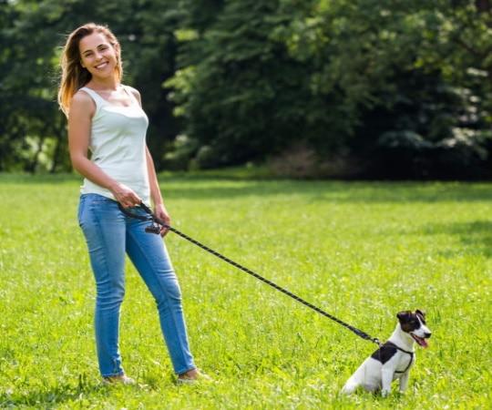 Laisse de dressage solide toute taille, pour animal de compagnie ou chien de chasse, corde solide pour chien qui tire, pas cher et sans enrouleur top5