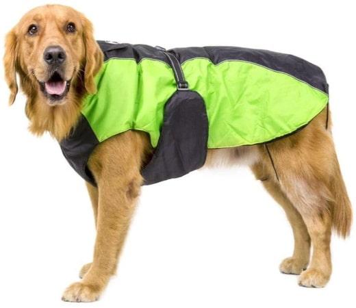 Manteau pour chien grande taille, avec protection bandes réfléchissantes, avec passage pour harnais animal, 3XL, 4XL ou encore 5XL fermeture éclair
