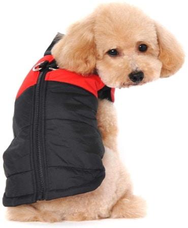 Manteau pour chien petite taille imperméable, doudoune pour l'hiver animal, tailles multiples avec rembourrage pour rester au chaud sous veste