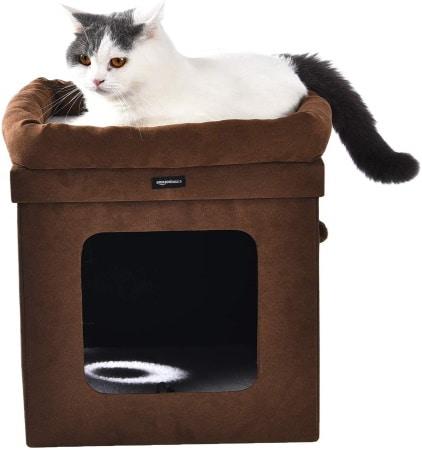 Niche à chat d'intérieur AMAZON BASICS pliable pour la maison, nettoyage facile et pliable top5