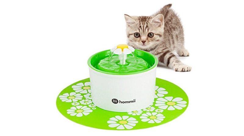 Fontaine à eau pour chat TOP 3