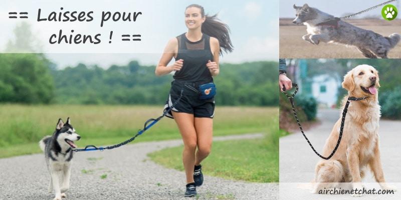 Meilleures laisses pour chiens corde, qui tire, de dressage, de chasse, ou pas cher, pour votre animal de compagnie (jogging, course à pied, ...) top5