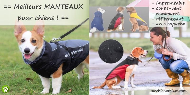 Meilleurs manteaux pour chiens ou chiots, vestes imperméables ou vêtements réfléchissants, contre pluie et froid d'hiver, petite ou grande taille