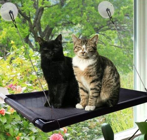 Hamac pour chat robuste fixation vitre et fenêtre PETLSAY CWPF01