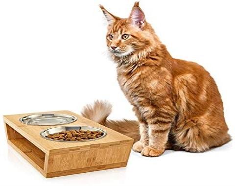 Chat manger croquettes gamelle double avec eau chaton sur support bois et distributeurs inox top6
